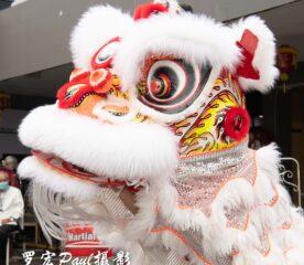 Foodies Moon Festival (32)